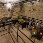 cetatea-de-scaun-a-sucevei-muzeul-bucovinei-11