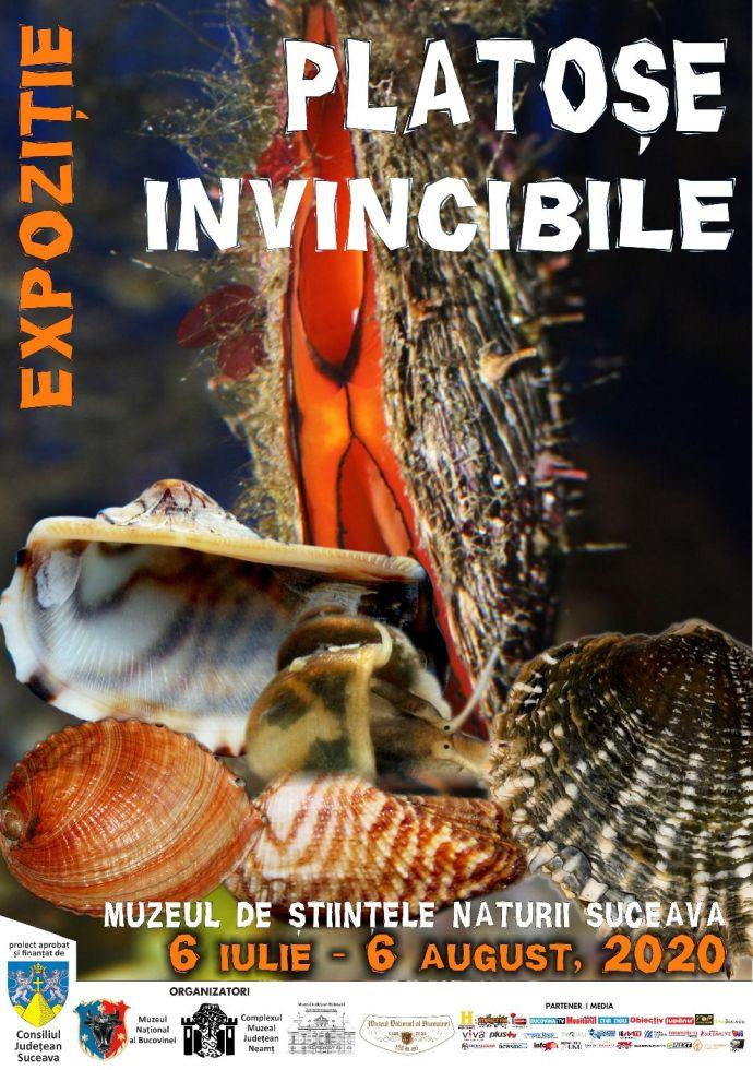 afis expozitie moluste 2020 bun