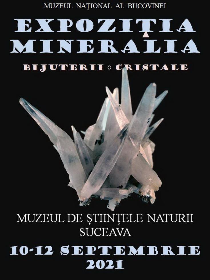 Mineralia Suceava 2021